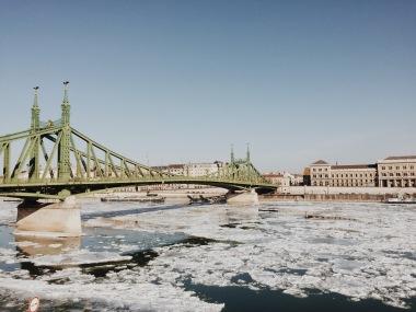 Frozen Danube!